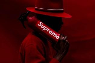 Dapper Lou Creates a Striking Color-Coordinated Photo Series