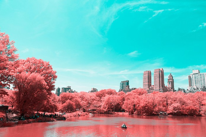 New York's Biggest Tourist Destination Transformed Into Breathtaking Infrared Landscape