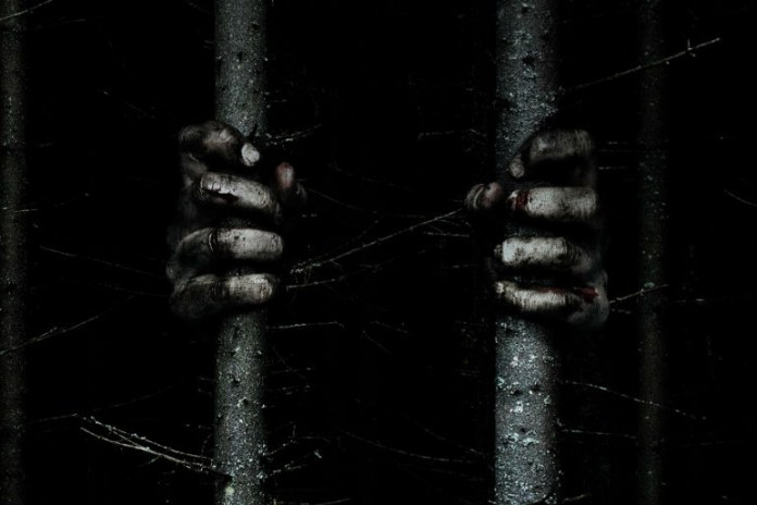 This Teaser for Horror Film 'The Woods' Shows Why Less Is More