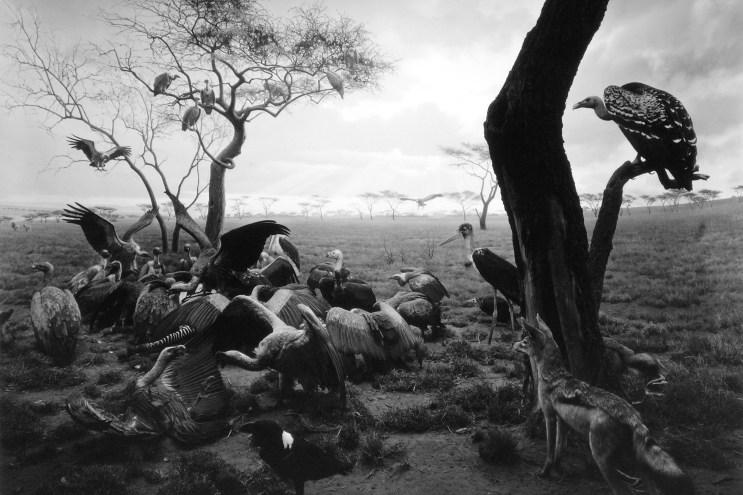 "Hiroshima Sugimoto's ""Black Box"" Exhibit Opens in Madrid"