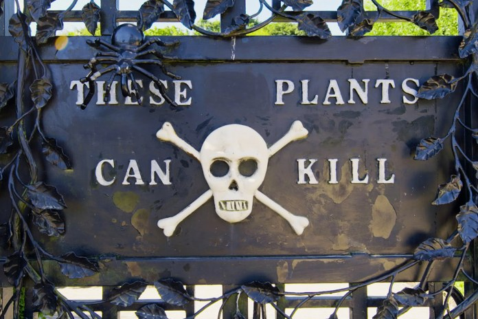 Enter the Deadliest Garden in the World