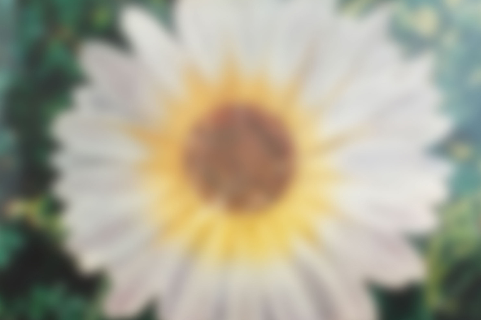 """Hiroshi Fujiwara's """"FLOWER HUDDLE"""" Exhibition to Return"""