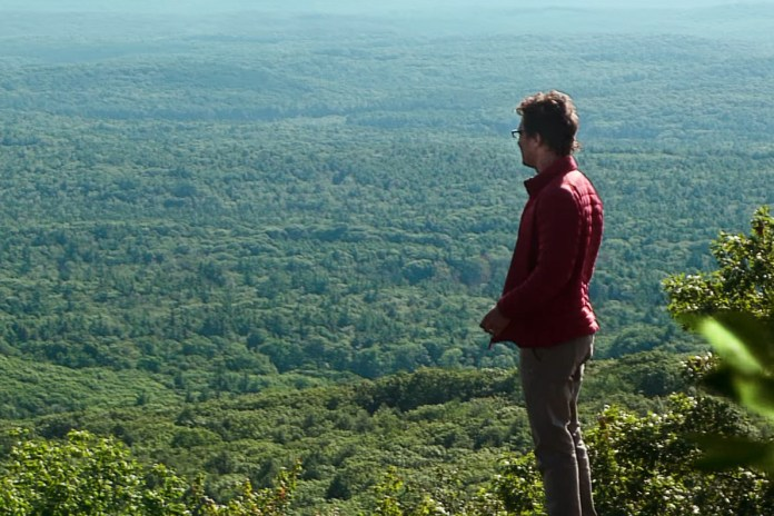 Matthew McConaughey Ventures Into Japan's Suicide Forest in Gus Van Sant's Upcoming Drama