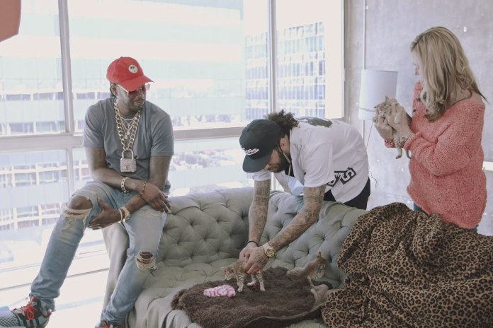 2 Chainz Mingles With Dog-Like Cats in Latest 'Most Expensivest' Installment