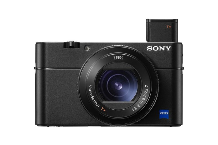 Sony's Latest RX100 Mark V Is a Game-Changing Compact Camera