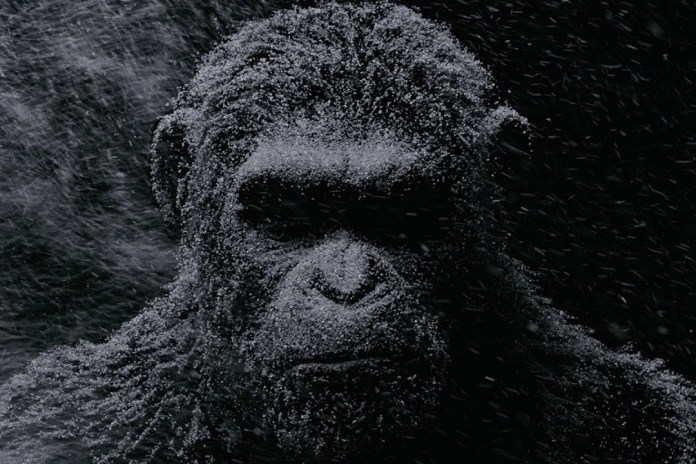 The 'War for the Planet of the Apes' Teaser Trailer Arrives
