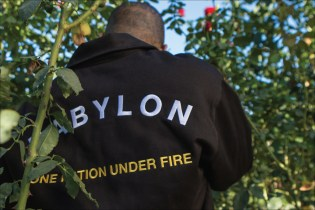 Babylon LA Branches out for Its Fall/Winter 2016 Collection