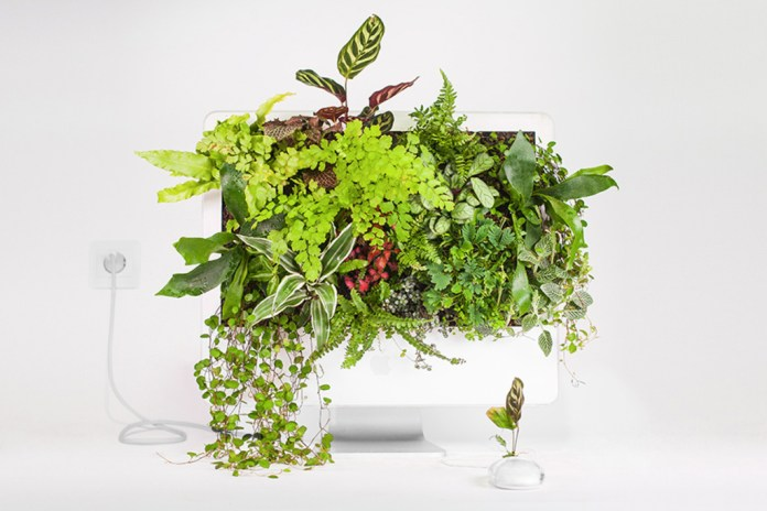 Parisian Artist Turns Old Apple Products Into Plants