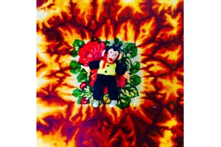 Listen to Hodgy's Debut Album, 'Fireplace: TheNotTheOtherSide'