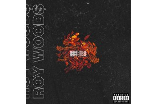 Stream Roy Wood$'s New EP, 'Nocturnal'