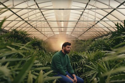 """Dirty Projectors Announce New Album, Share New Single, """"Up In Hudson"""""""