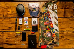 Essentials: Nate Robinson