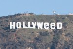 Picture of Pranksters Change the Iconic 'Hollywood' Sign to Say 'Hollyweed'