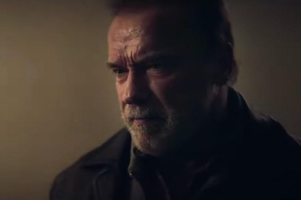 Aftermath Schwarzenegger
