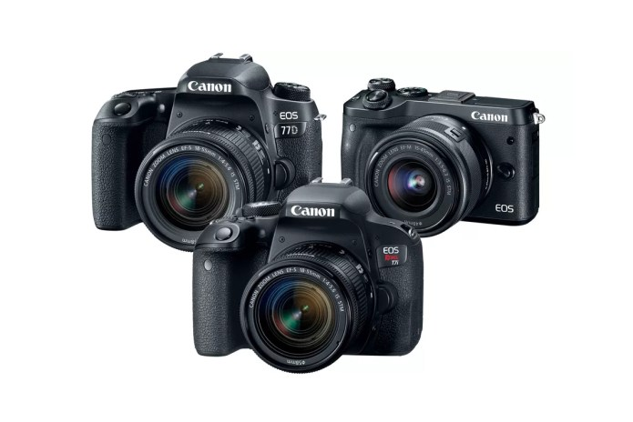 Canon Unleashes a Diverse Set of New Cameras Without One Key Modern Feature