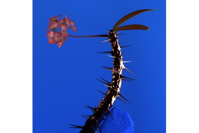 Listen to Flume's New 'Skin Companion EP II'
