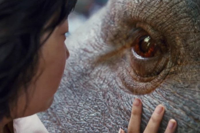 Netflix's 'Okja' Teaser Trailer Shows First Glimpse of a Mysterious Creature