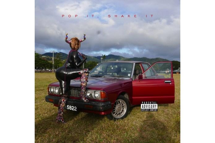 """Hear YG & DJ Mustard's New Single, """"Pop It, Shake It"""""""