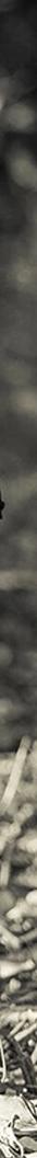 streetwear fashion style menswear mens clothing 2017 trends 10 business wear clunky sneakers shoes rave soccer football scarves suits side stripe pants trousers workwear puffer down coats jackets waist bag maximumist off-white virgil ablog balenciaga triple s gosha Rubchinskiy kappa logos louis vuitton supreme