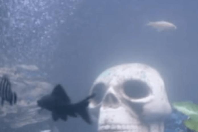 Raekwon – Ferry Boat Killaz