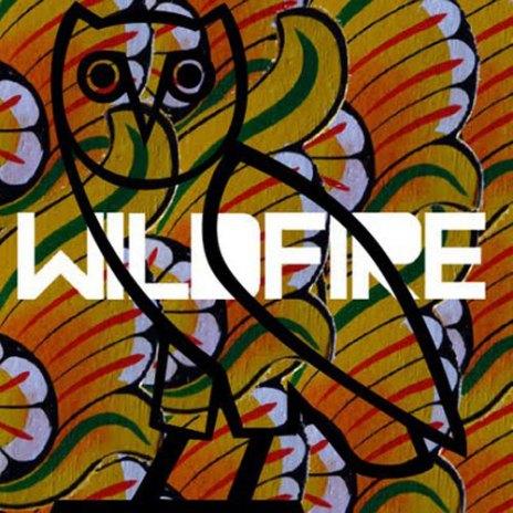 SBTRKT & Yukimi Nagano featuring Drake - Wildfire (Remix)