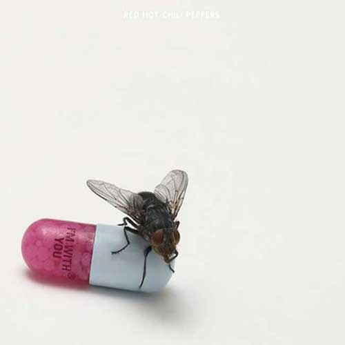 Red Hot Chili Peppers - I'm With You (Artwork)