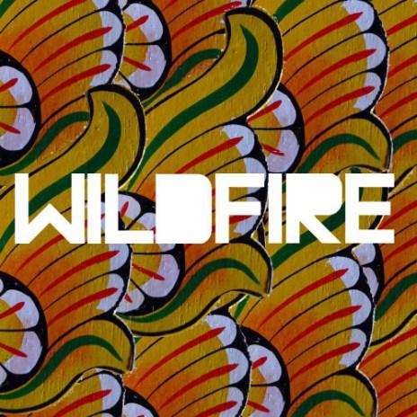 SBTRKT featuring Yukimi Nagano - Wildfire (Drumma Boy Remix featuring Shabazz Palaces)