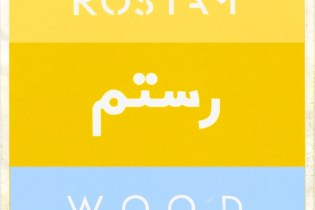 ROSTAM (of Vampire Weekend) - Wood