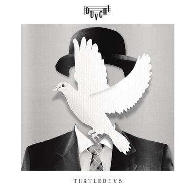 Duvchi -Turtleduvs