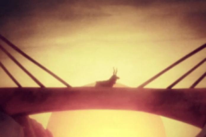 Fleet Foxes - The Shrine/An Argument