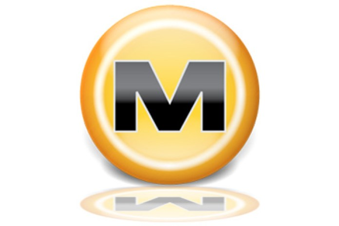 RIAA comments on Megaupload shutdown