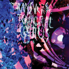 Animal Collective - Transverse Temporal Gyrus LP