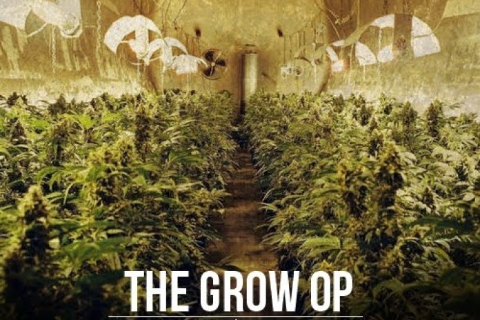 Mac Miller - The Grow OP