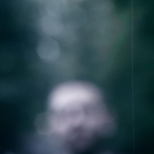 Michael Francis - Dive