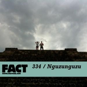FACT mix 334: Nguzunguzu