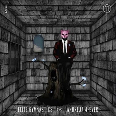 Elite Gymnastics - Andreja 4-Ever