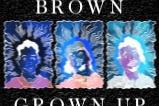 Danny Brown - Grown Up (Distinction Refix)