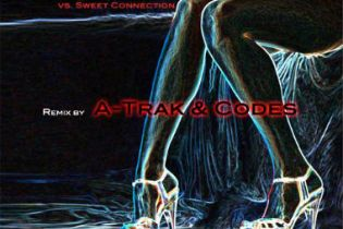 Cerrone - Misunderstanding (A-Trak & Codes Remix)