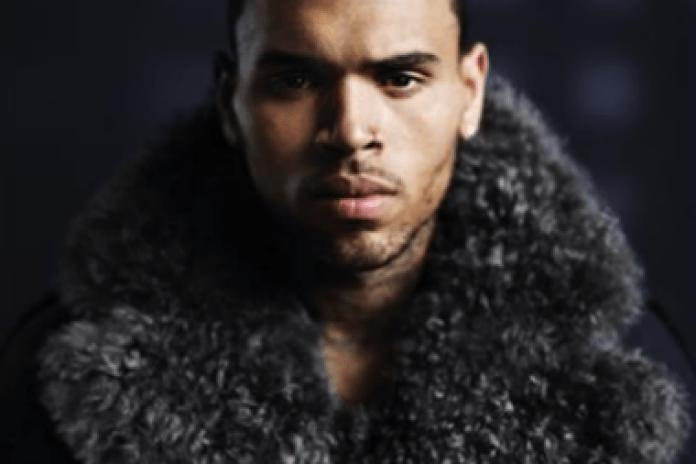 Chris Brown - W.T.F.I.M.L.