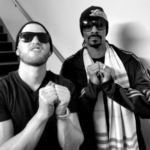 Snoop Lion featuring Mike Posner - Lighters Up (Remix)