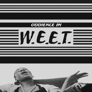 HYPETRAK Premiere: Oddience - W.E.E.T.