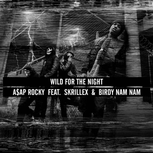 A$AP Rocky featuring Skrillex & Birdy Nam Nam - Wild For The Night