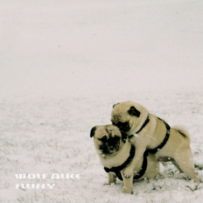 Wolf Alice – White Leather