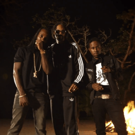Snoop Lion featuring Mavado & Popcaan - Lighters Up