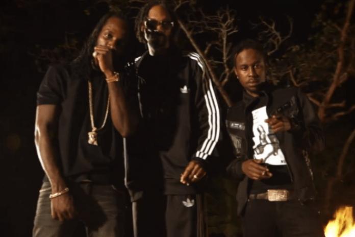 Snoop Lion featuring Mavado & Popcaan - Lighters Up