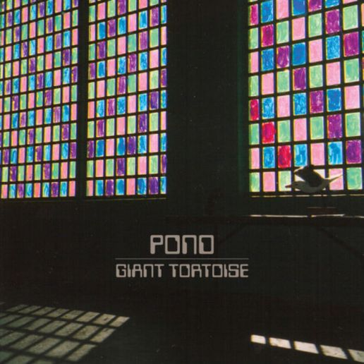 "Tame Impala's Side Project, Pond Debuts New Song ""Giant Tortoise"""