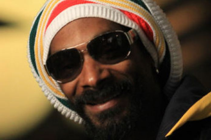 Snoop Lion Shares Album Details, Says 'Reincarnated' Will Feature Drake, Chris Brown & More