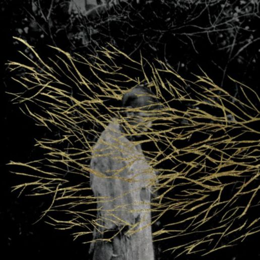 Forest Swords – The Weight of Gold
