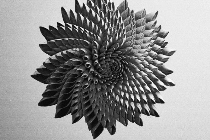Dpat - In Bloom (Full Album Stream)