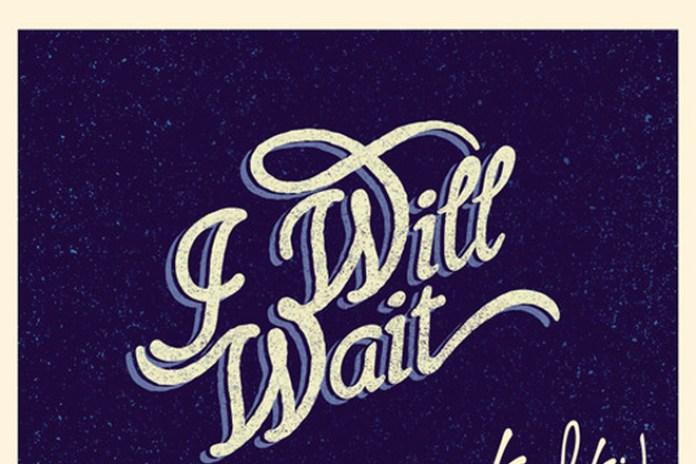 Mumford & Sons - I Will Wait (Kulkid Remix)